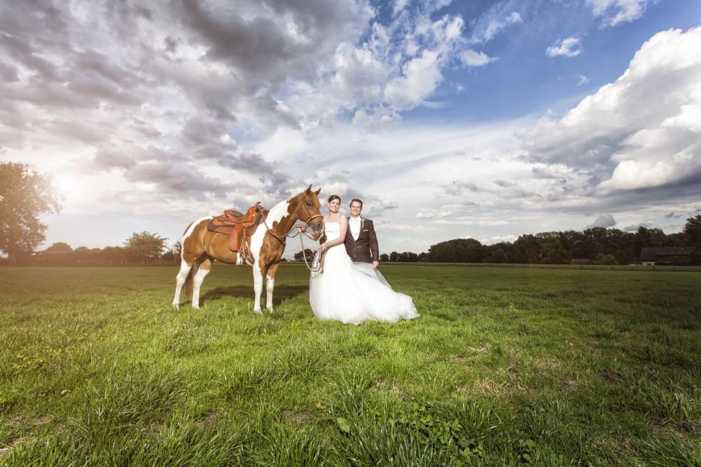 Hochzeit auf dem Land, Bauer Südfeld, Herten